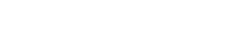 Accu-Lines - logo white